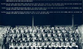 1972 NY Giants