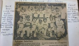 Falconer All-Stars Little League Team, 1974.