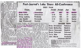 Post-Journal's Lake Shore All-Conference.
