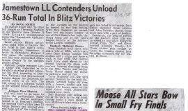 Little League baseball articles.