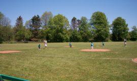 tee-ballers (2)