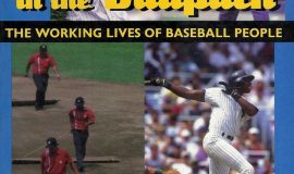 Cover of In The Ballpark.
