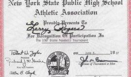 1987 NYSPHSAA baseball tournament participation.