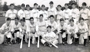 1944 Jamestown Falcons baseball team..