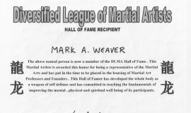 Diversified League of Martial Artists.