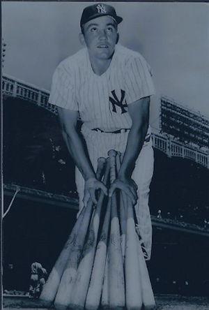 Irv Noren Chautauqua Sports Hall Of Fame